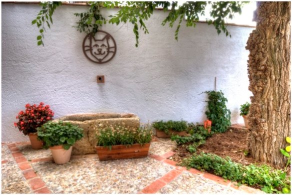 hotel-ecologico-fuente-del-gato-586x393